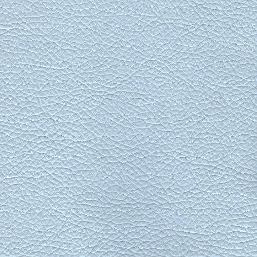PPM-FR - BLUE (520)