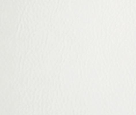 PPM-S - WHITE (502-01)