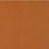 PPM-FR - CINNAMON (320) [+C$64.68]